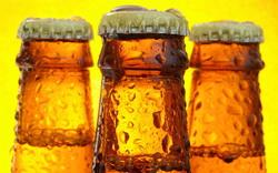 Пивовары предвещают прекращение производства пива в РФ