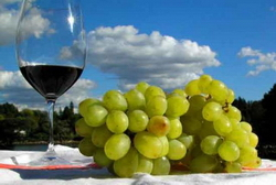 Возвращение грузинского вина на рынок РФ привело к изменению планов армянских виноделов