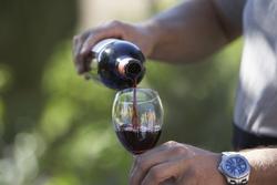 Молдавские винопроизводители, вероятно, начнут поставлять вина в Украину