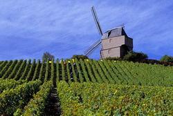 Прогноз по рейтингу французского региона Шампань-Арденны пересмотрен на «негативный»