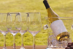 Виноделы ЮАР увеличили объемы экспорта вин на 26%