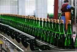 Армения: в январе 2014 года было выпущено на 33,2% больше водки и на 4,3% больше коньяка