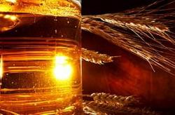 Белоруссия защитила интересы своих пивоваренных заводов