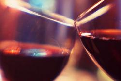 Гагаузия занялась развитием винодельческой отрасли