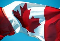 За последние десятилетие канадцы стали пить в 4 раза больше вина