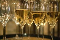 На Кубани стали выпускать больше вина и меньше водки, коньяка и бренди