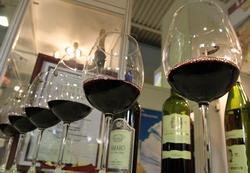 Молдавский Минфин поддержит виноделов новым законопроектом