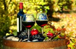 Если вы любите хорошее вино, вам обязательно понравятся вина испанского региона Риоха