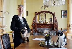 В столице Бельгии открылось уже второе «кошачье» кафе