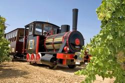 Испанские виноделы предлагают экскурсию на «винном поезде»
