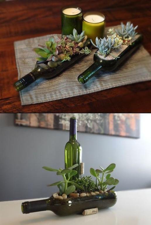 Сад в пустой бутылке из-под вина